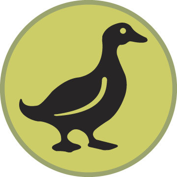 Duck's Nest Preschool Logo
